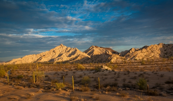 Cabeza Prieta Mountains in Southwestern Arizona.