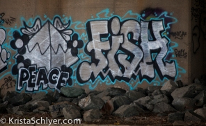 Grafitti under a bridge on the Anacostia River.