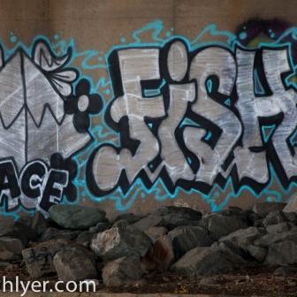 Grafitti under a bridge on the Anacostia River.