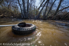 A tire being collected out of the Anacostia River for Earth Day clean-up 2014.
