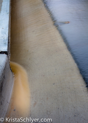 Silted stormwater runoff going into storm drain in Mount Rainier, MD.