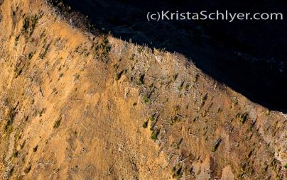 Rhodes Peak, Idaho